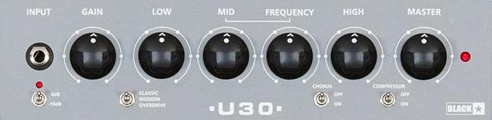Blackstar Unity 30 Controls